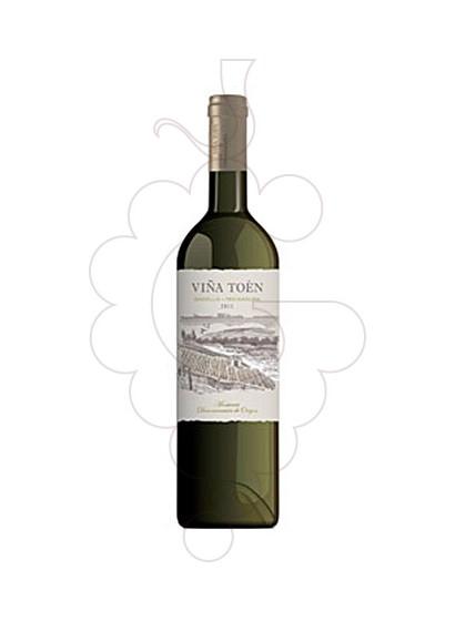 Foto Viña Toén vino blanco