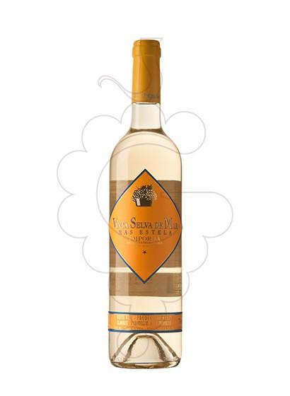 Foto Vinya Selva de Mar Blanco vino blanco