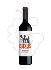 Buxus Les Aubagues