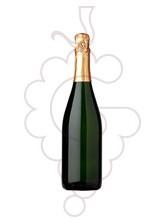 Mo Masia D'Or Brut Chardonnay