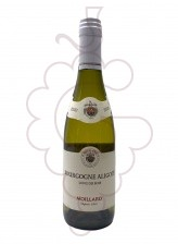 Moillard Bourgogne Aligoté (mini) 2020