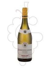 Moillard Bourgogne Aligoté 2019