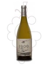 Spioenkop 1900 Blanc